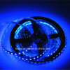 IP65 120 LEDs/M 2835 Strip Light for Holiday