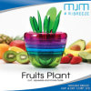Wholesale Fruit Plant Stainless Steel Kitchen Tool Sets