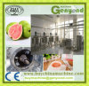 Guava Pulping Screw Extractor Machine