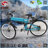 Alloy Frame with Suspension E Bike Electric Mountain Scooter with Disk Brake