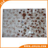 Glazed Wall Tiles Ceramic 3D Inkjet Tiles
