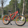 26inch 500W Fat Tire Mountain Electric Bike/Electric Bicycle/Ebike