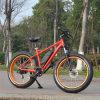 26inch 500W Fat Tire Mountain Electric Bike/Electric Bicycle/Ebike