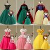 Aisha Princess Flower Girl Dress Snow Ice Cinderella Sufia Princess Girl Dress Cinderella Ariel ...
