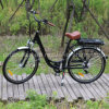 250W Brushless Rear Motor Lithium Battery E-Bike