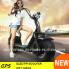 Popular City Coco Electric Scooter Motorcycle Bike with Ce