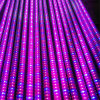Separate 18W LED Plant Grow Lamp Hydroponic for Plant
