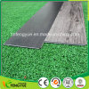 Antistatic Vinil PVC Plastic Flooring Waterproof for USA Market