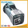 Good Quality 11kw/15 Kw Motor for Construction Elevator