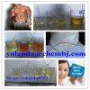 Safe Fast Shipping Anabolic Steroid Powder Methenolone Acetate /Primobolan/Primobolone CAS434-05-9