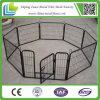 10X10X6 Foot Classic Painted Outdoor Dog Kennel