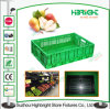 Plastic Folding Storage Crate Collapsible Stacking Fruit Crate