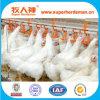 Poultry Equipment Nipple Drinker for Chickem