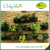 Onlylife PE& Felt Material Vertical Wall Planter for Home Garden