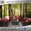 Well Furnir Rattan 7 Piece Deep Seating Group with Cushion WF-17047