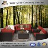 Well Furnir Rattan 7 Piece Deep Seating Group with Cushion
