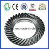 Spiral Bevel Gear Truck Gear N600