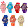 Hot Selling Ladies New Watch Geneva Diamond Silicone #V713