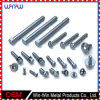 Custom Sizes Stainless Steel Hex Carriage Bolt for Bus