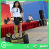 China Supplier Electric Motocross Bike