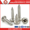 Stainless Steel DIN7981 Pan Head Self Tapping Screw
