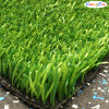 Bicolor Artificial Grass for Tennis Court