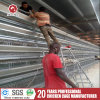 Automatic Chicken Layer Cage Design for Kenya Farms
