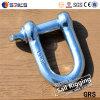 European Type Screw Pin D Shackle