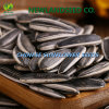 2016 New Type 601 Cpmpentitive Price Sunflower Seeds for Human