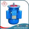 Double -Capacitor Single Phase AC Motor