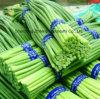 2017 New Crop Fresh Garlic with Good Price