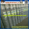 Grassland Field Fence/Poultry Mesh Fence for USA