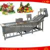 Ce Quality Automatic Bubble Fruit Washing Machine Vegetable Washer