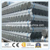 Hot Dipped Galvanized Square or Round Steel Tube