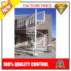 Prefabricated Wood Tread Spiral Staircase (JBD-S9)
