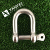 Stainless Steel 316 D Shackle