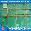 China Protective Scaffolding Building Net with Fire Retardant