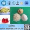 Food Grade Hydrolyzed Gelatin Powder