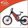 Alu Alloy, Brushless, Rear Motor 48V 1500W Electric Bike