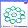 Customized Variuos Rubber O Ring
