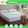 Queen Mattress Protector Bedbug Waterproof Zippered Encasement