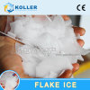 Koller 2000kg/Day Fresh Water Flake Ice Machine, Glass Ice