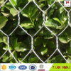 Hot Sale Poultry Mesh with Best Price