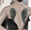 Fantasy Wings Waterproof Temporary Tattoo Sticker Art Tattoo Sticker