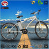 Wholesale Good Quality Electric Mountain Bike with Hydraulic Suspension