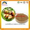 Natural Aesculus Hippocastanum Extract Aescin Escin