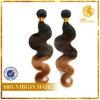 T Color Hair Body Wave 8A Grade 100% Virgin Hair Extension (TFH-NL57)
