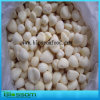 Frozen Garlic Cloves