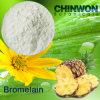 15. Pineapple Enzyme Bromelain 100gfu-2400gdu