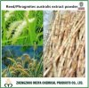 China Origin Phragmites Australis /Reed Root Powder Extract 10: 1, 20: 1 for Health